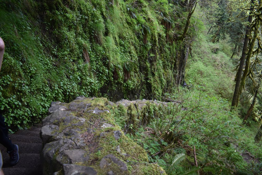 hike 17